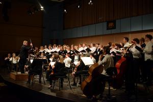 Musikkonservatoriets elever spelade under ledning av dirigent Paul Mägi.