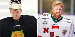 Oliver Norgren och Erik Hanses har bara gjort två matcher var mellan stolparna för sina respektive lag denna säsong. Bild: DT/Bildbyrån