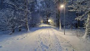 """""""På väg mot skolan, Hisingsängen! Hurra - äntligen snö"""", skriver Anna Norberg som tagit denna bild. Foto: Anna Norberg"""