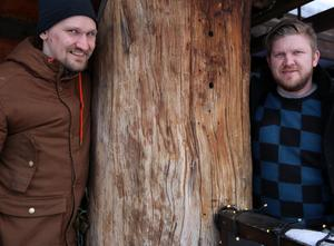 Wasastugan är byggd av ryska stockar, många med en dimension på 70 centimeter.