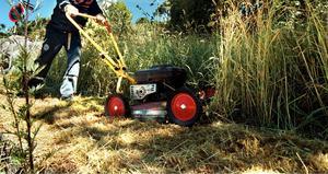 Kommunernas kostsamma åkgräsklipparnorm är dålig för både den kommunala ekonomin och naturens solitärbin. Foto: Tomas Oneborg/SCANPIX