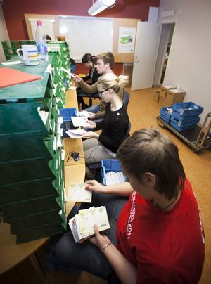 5. Och sedan sorteras alla korten på postnummer. Sofie Sjöberg, Annica Magnell, Philip Hallenberg och Anjel Tawaifi sitter med hörlurarna i öronen medan de sorterar.