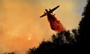 Flyget bekämpar skenande skogsbränder i Kalifornien. Foto: TT