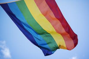Prideflaggan syns allt mer i Hälsingland. Vad står den för egentligen, undrar insändarskribenten och ifrågasätter vad som skrivs på Stockholm Prides hemsida.