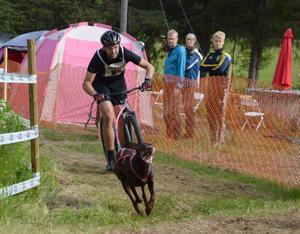 """I helgen arrangerades dragghundtävlingen """"Summer Race Sollefteå"""" i Resele med närmare 70 tävlande och över 100 draghundar."""