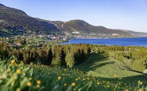 Vackra Åre på sommaren. Foto: Niclas Vestefjell