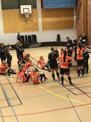 Rönnby Tigers förlorade med uddamålet mot Pixbo och SM-slutspelet är över. Foto: Lena Andgrim