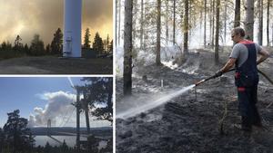 Räddningstjänsten arbetade i cirka en vecka med branden vid Möckelsjöberget.