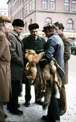 Män spanar in rävpälsar på 1970-talet. (Bild: Örebro stadsarkiv)