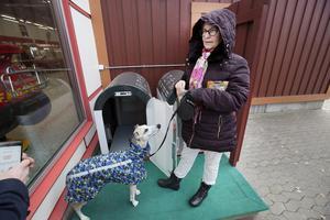 Åsa Palm låter hunden Milo prova hundparkeringen utanför Maxi icas entré.