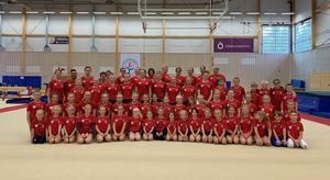 Totalt 57 unga gymnaster deltar på lägret i artistisk gymnastik. Foto: Anja Andersson
