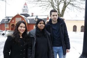 Ny satsning i Kopparberg. Rudainak Aljubori och Ahmad Al Zeeb är de nyanställda fritidsguiderna. I mitten i bild projektledare Karin Wouda.