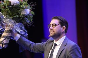 Sverigedemokraternas partiledare Jimmie Åkesson hyllas med blommor efter att han valts till partiordförande under partiets landsdagar i Örebro. Foto: Janerik Henriksson / TT.