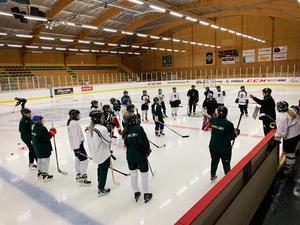 Det nystartade damhockeylaget i Alfta såg det som självklart att sluta upp bakom idén om att anordna en välgörenhetsmatch.