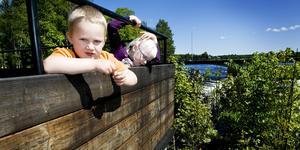 Det finns mycket att se längs Upplandsleden, här Färnebofjärden. Foto: David Holmqvist