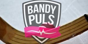 Bandypuls sänder 60 matcher från bandyallsvenskan.