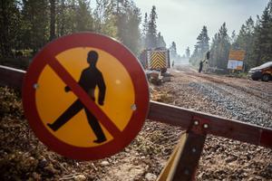Bild från Älvdalens skjutfält.