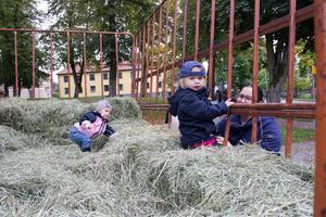 Tyra Petterson,  i rosa jacka och Ellie Eriksson, båda två år, passade på att hoppa i hölasset. Ellies mamma Sofie Jansson håller koll.