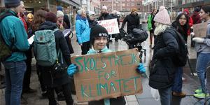 Sofia Åkesson fortsatte sin skolstrejk på fredagen och deltog även i manifestationen på Sigmatorget på eftermiddagen.