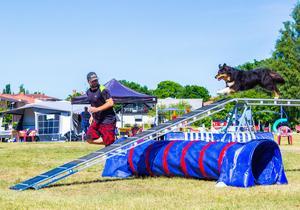Andreas Oskarsson och hunden Lyxa har SM i sikte varje gång som de tävlar i hundsporten agility.