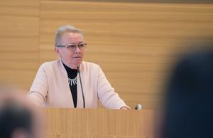 """Anne-Marie Larsson (M) vill underlätta för andra än """"pensionärer och arbetslösa"""" att delta i olitiken"""
