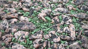 När granulatet hamnar utanför planen ska det kunna samlas upp och återanvändas. Miljöpåverkan uppstår om det förs ut i till exempel Mälaren via dagvatten, avlopp etc.