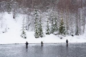 Flugfiskarna stod på rad i det strömmande vattnet vid byn Heden strax norr om Orsa.
