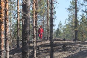 På fyra dygn har åtta misstänkt anlagda bränder inträffat i Mora, Malung och Vansbro.