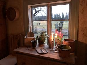 Utsikt från köket.