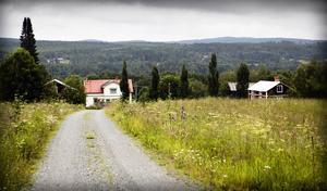 Svensk landsbygd. Foto: Karin Rickardsson/Arkiv