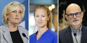 Ann Söderström, Kristine Rygge och Thomas Wahlberg medverkar under Regionens digitala pressträff.