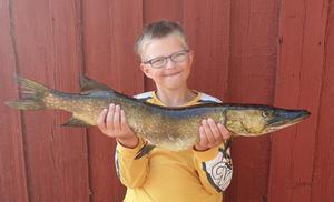 Elmer Karlberg, Sunderbyn, är på fiskesemester i Ransjö. Målet är att få en riktigt stor gädda och denna på tre kilo är en bit på vägen. Foto: Läsarbild