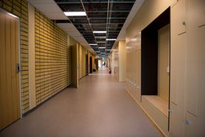 Tegelväggen som löper genom korridorerna är nästan det enda som är kvar efter renoveringen av lokalerna. Väggens färgnyans har styrt valet av färg i skolan.