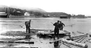 1964 var Hoan översvämmad i Överhogdal.