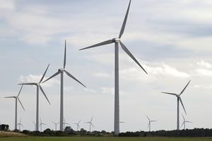 Vindkraft byggs ut utan statliga subventioner. Foto: Fredrik Sandberg/TT