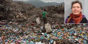 Miljöpartiet borde lägga energin på att påverka och verka globalt - där det spelar roll - istället för att komma med idiotiska förslag för oss i Dalarna, skriver en ilsken läsare. Foto: Anders Staffas, Anupam Nath