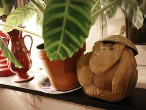 Barndomens kokosnöt har fått följa med till Öster.