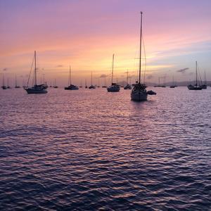 Foto: Privat. Segelbåten Svea, som är Påls och Linas hem, bland 800 andra båtar i St Anne, Martinique, där paret ligger ankrade under lockdown.