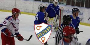 Adam Lidström och Kenneth Bergqvist var två av spelarna som dök upp i hemvändarlaget 2014. Foto: Kenneth Johansson