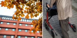Exempel på hjälpmedel är rullator, rullstol, toalettförhöjning och duschstol.  Arkivbilder: ST och TT