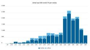 Antal nya fall covid-19 per vecka. Grafik: VGR