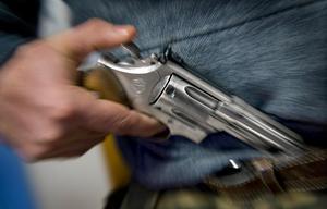Polisen hoppas att kunna minska antalet olagliga vapen genom vapenamnestin.