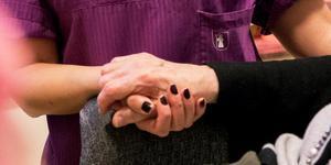 En hjälpande hand i äldreomsorgen. Foto: Arkivbild