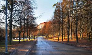 Saltskogsvägen mot Saltskog centrum är en av de gator och vägar som behöver bli mer stadsmässig. Hus med bostäder och lokaler i botten eller en förskola med upplyst gatufasad är några av de saker som kan göra infarten mer välkomnande. Foto: Södertälje kommun