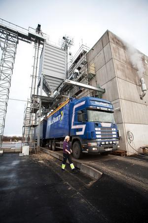Chauffören Elin Bond väntar medan lastbilens flak fylls med nyproducerad pellets som ska eldas i Grycksbo utanför Falun.