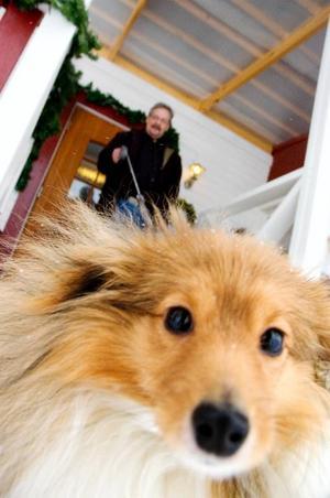 Numera är promenader med hunden Pelle naturliga inslag i Alf Lundins vardag.