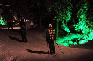 Grönt ljus i Trollskogen.