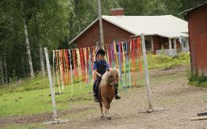 Mikael Hjärtström och hans Sirap genomförde ryttarproven med bravur.FOTO: KERSTIN EõRIKSSON