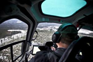 Minst en vecka räknar Björn Gadestedt från Sveaskog att inventeringen med helikopter ska pågå.