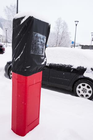 500 kronor. Så mycket kan det kosta för den som slarvar med den nya avgiften. 1 december börjar de nya parkeringsavgifterna att gälla. Parkeringsautomater installeras under november.